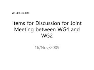 Items for Discussion  for Joint Meeting  between  WG4  and  WG2