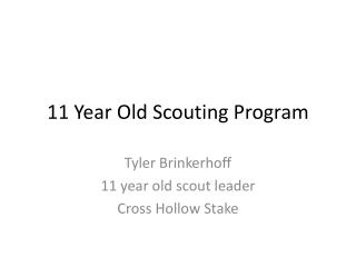 11 Year Old Scouting Program