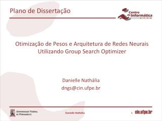 Otimização de Pesos e Arquitetura de Redes Neurais Utilizando  Group  Search  Optimizer