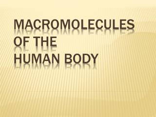 Macromolecules  of the  Human Body