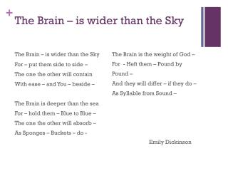 The Brain – is wider than the Sky