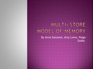 Multi- Store Model of Memory