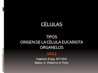 CÉLULAS TIPOS  O rigen de la célula eucariota  ORGANELOS 2012
