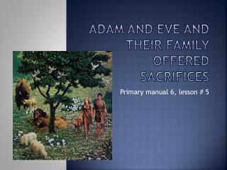 Adam and Eve and their family offered sacrifices