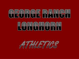 GEORGE RANCH LONGHORN