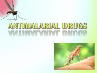 ANTIMALARIAL DRUGS
