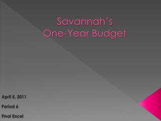 Savannah's One-Year Budget