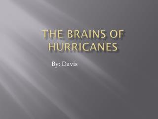 The Brains of Hurricanes