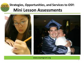 Strategies, Opportunities, and Services to OSY:   Mini Lesson Assessments