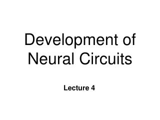 Development of Neural Circuits