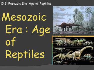 13.3  M esozoic Era: Age of Reptiles