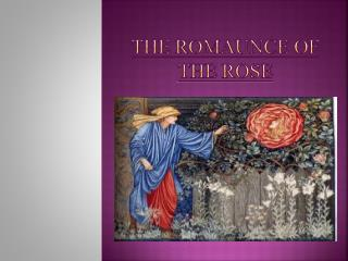 The  Romaunce  of the Rose