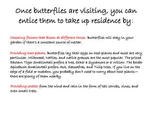 Once butterflies are visiting, you can entice them to take up residence by :