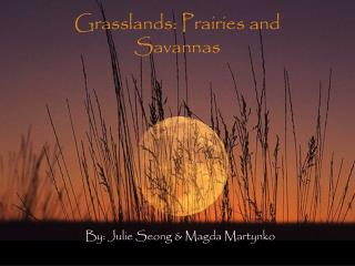 Grasslands: Prairies and Savannas
