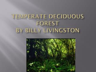 Temperate Deciduous forest  By Billy Livingston