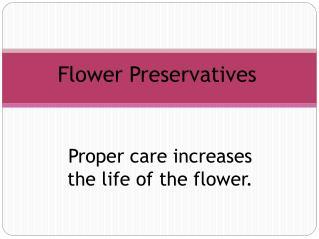 Flower  Preservatives