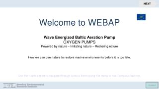 Welcome to  WEBAP Wave Energized Baltic Aeration Pump OXYGEN PUMPS