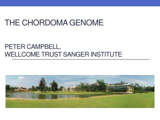 The  chordoma  genome Peter Campbell, Wellcome  Trust Sanger Institute