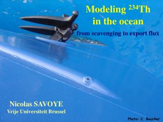 Modeling  234 Th in the ocean from scavenging to export flux
