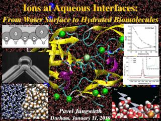 Ions at  Aqueous Interfaces : From Water Surface  to  Hydrated Biomolecules Pavel  Jungwirth