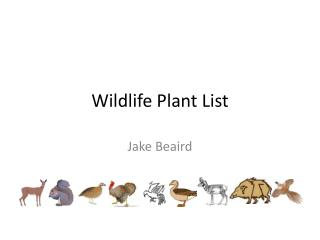 Wildlife Plant List