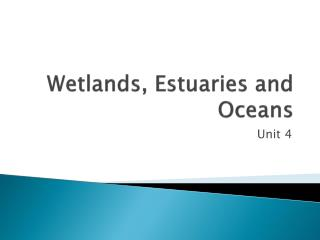Wetlands, Estuaries and Oceans