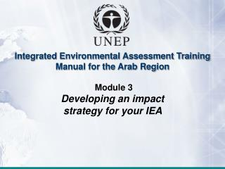 Integrated Environmental Assessment Training Manual for the Arab Region  Module 3