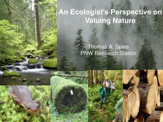 An Ecologist's Perspective on Valuing Nature