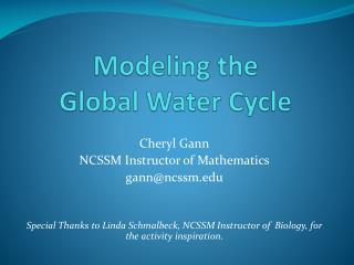 Modeling the  Global Water Cycle