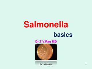 Salmonella basics