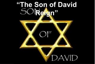 """The Son of David Reign"""