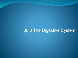 30.3 The Digestive System