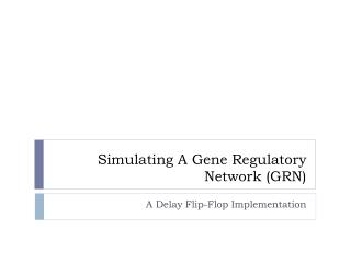 Simulating A Gene Regulatory Network (GRN)