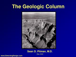 The Geologic Column