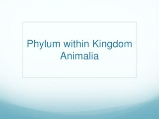 Phylum within Kingdom  Animalia