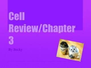 Cell Review/Chapter 3