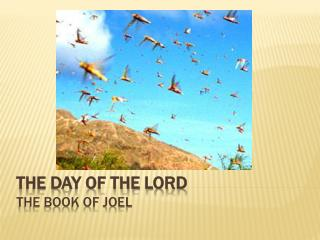 The DAY OF THE LORD THE BOOK OF JOEL