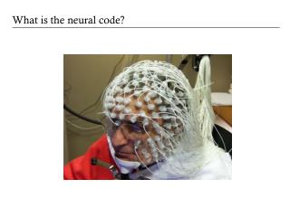 What is the neural code?