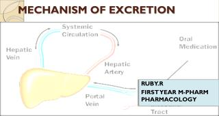 MECHANISM OF EXCRETION