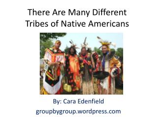 There Are Many Different Tribes of Native Americans