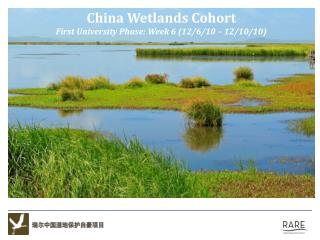 China Wetlands Cohort First University Phase: Week  6 (12/6/10  –  12/10/10 )