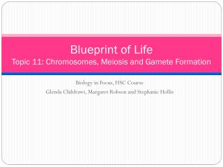 Blueprint of Life Topic  11: Chromosomes, Meiosis  and Gamete Formation