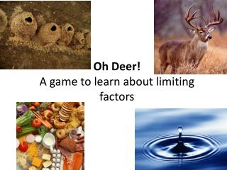Oh Deer!  A game to learn about limiting factors