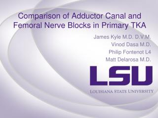 Comparison of Adductor Canal and Femoral Nerve Blocks in Primary TKA