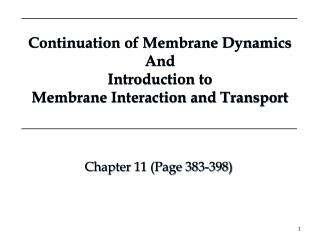 Continuation of Membrane Dynamics And  Introduction to  Membrane Interaction and Transport
