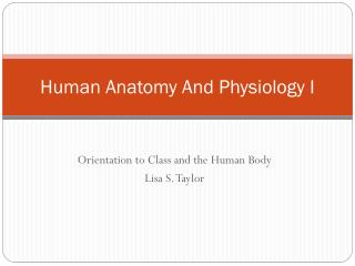 Human Anatomy  And Physiology I
