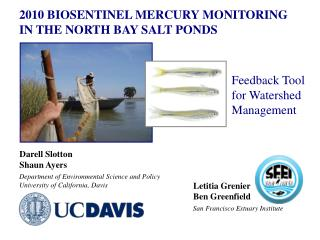 2010 BIOSENTINEL MERCURY MONITORING IN THE NORTH BAY SALT PONDS