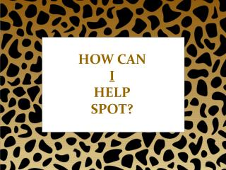 HOW CAN  I HELP SPOT?
