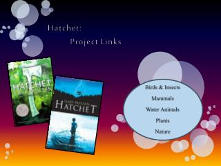 Hatchet:  	Project Links