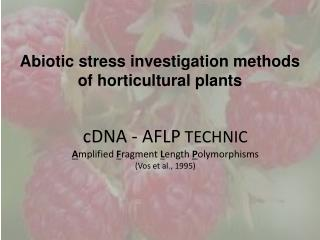 Abiotic  stress investigation methods of horticultural plants